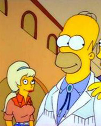 The Simpsons: Colonel Homer
