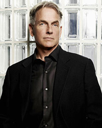 NCIS: The All-Gibbs Quiz