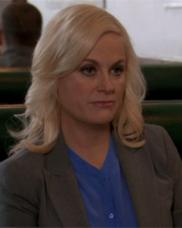 Parks and Recreation, S04E17: Campaign Shake-Up
