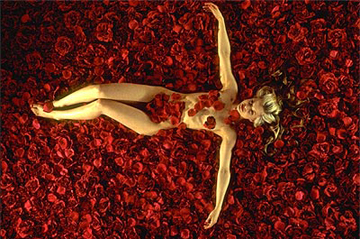 American Beauty Trivia Quiz