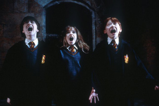Harry Potter and the Sorcerer's Stone Trivia Quiz